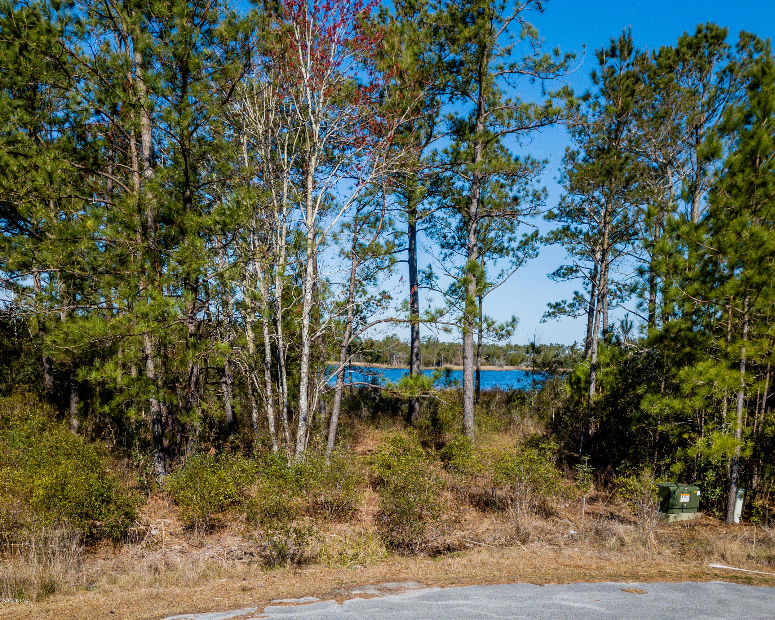 859 Winchester Way, Merritt, North Carolina 28556, ,Residential land,For sale,Winchester,100154906