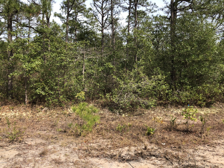 Carolina Plantations Real Estate - MLS Number: 100155043