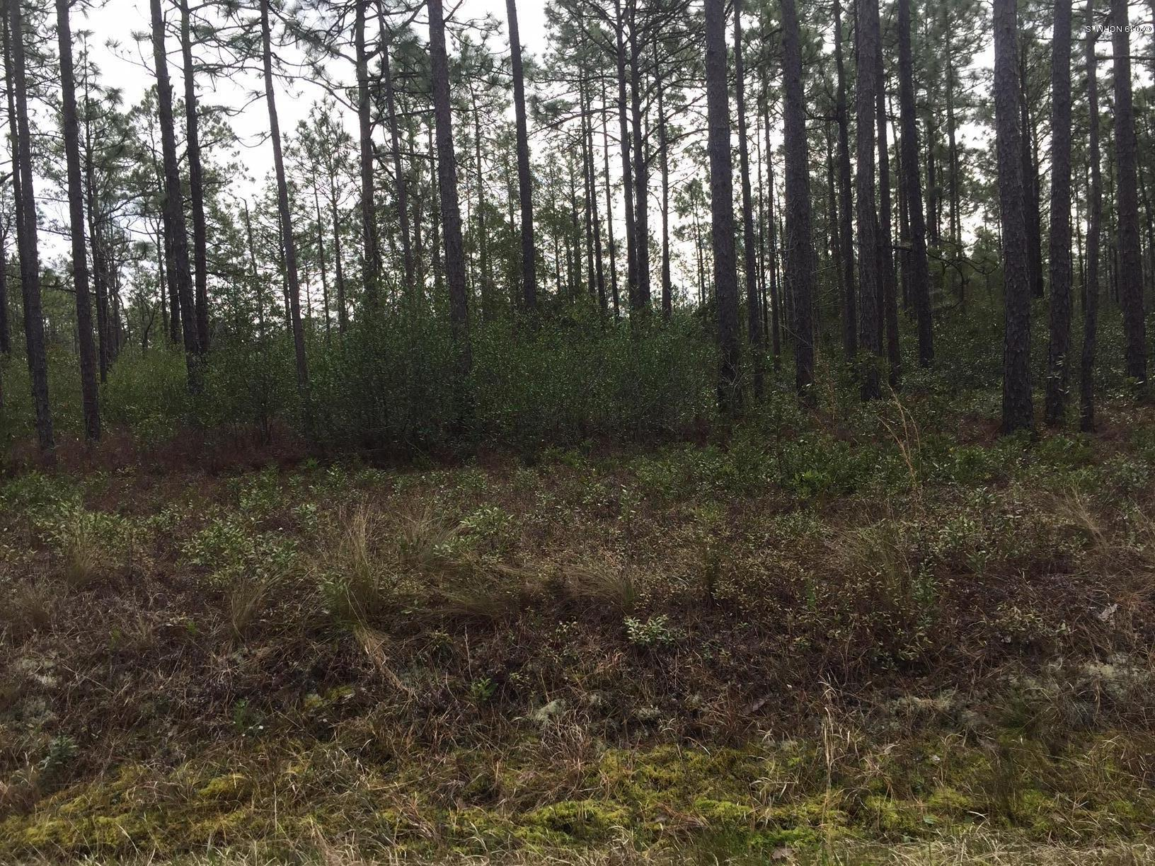 594 Edgewood Road, Boiling Spring Lakes, North Carolina, ,Residential land,For sale,Edgewood,100155288
