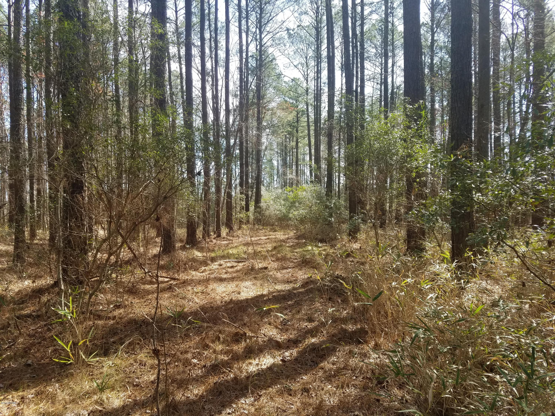 3 Spring Drive, Aurora, North Carolina 27806, ,Residential land,For sale,Spring,100155518