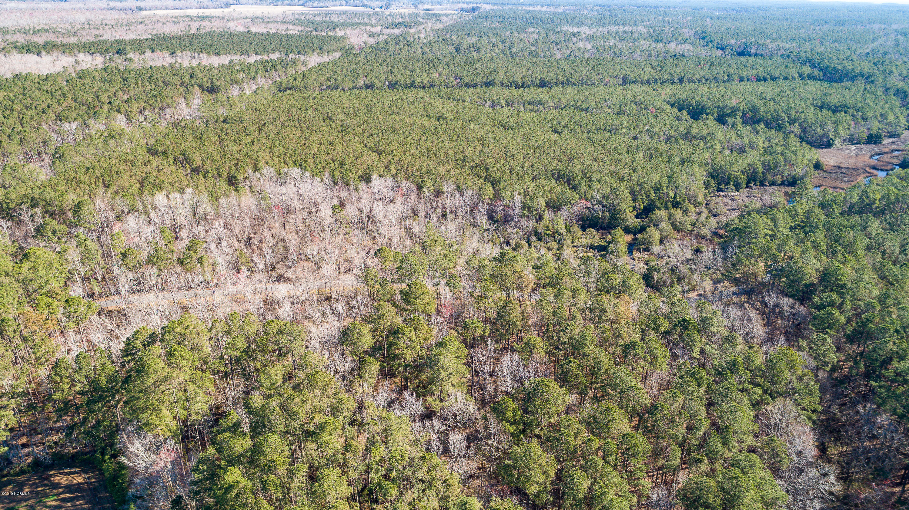Lot 25 Orchard Creek Road, Oriental, North Carolina 28571, ,Residential land,For sale,Orchard Creek,100155932