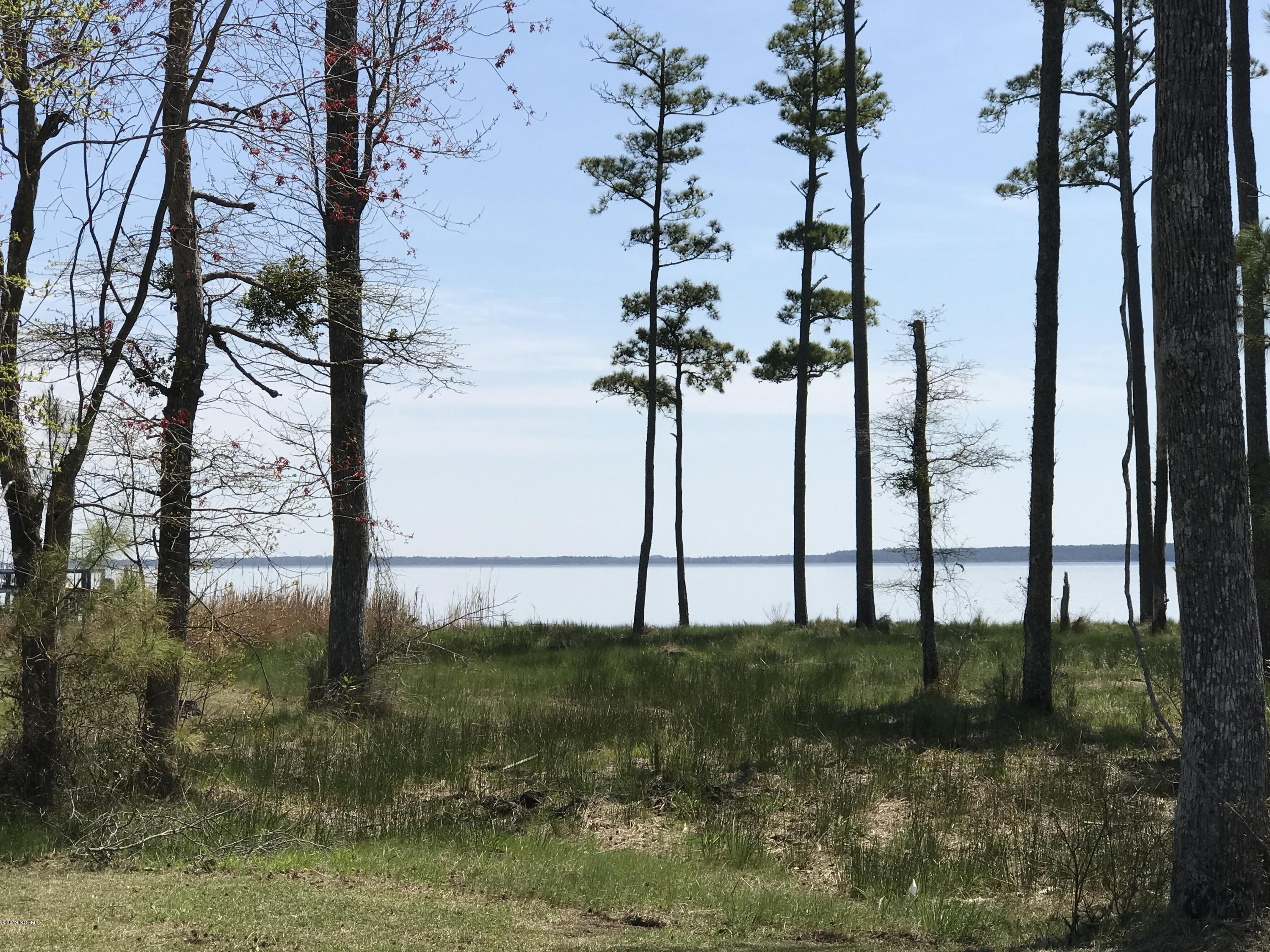 Lot 2 Dowry Creek, Belhaven, North Carolina 27810, ,Residential land,For sale,Dowry Creek,100157708
