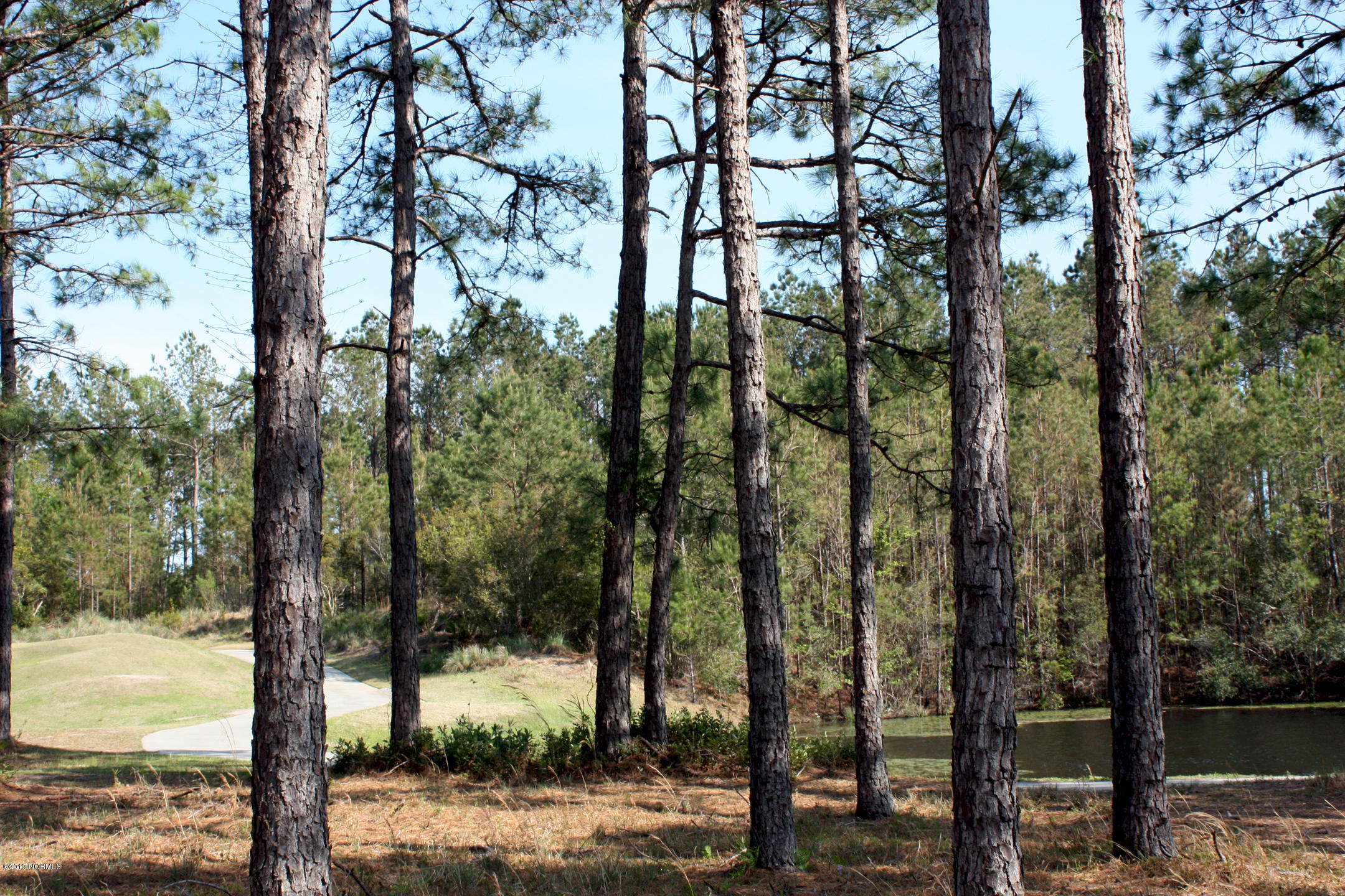6420 Castlebrook Way, Ocean Isle Beach, North Carolina 28469, ,Residential land,For sale,Castlebrook,100159670