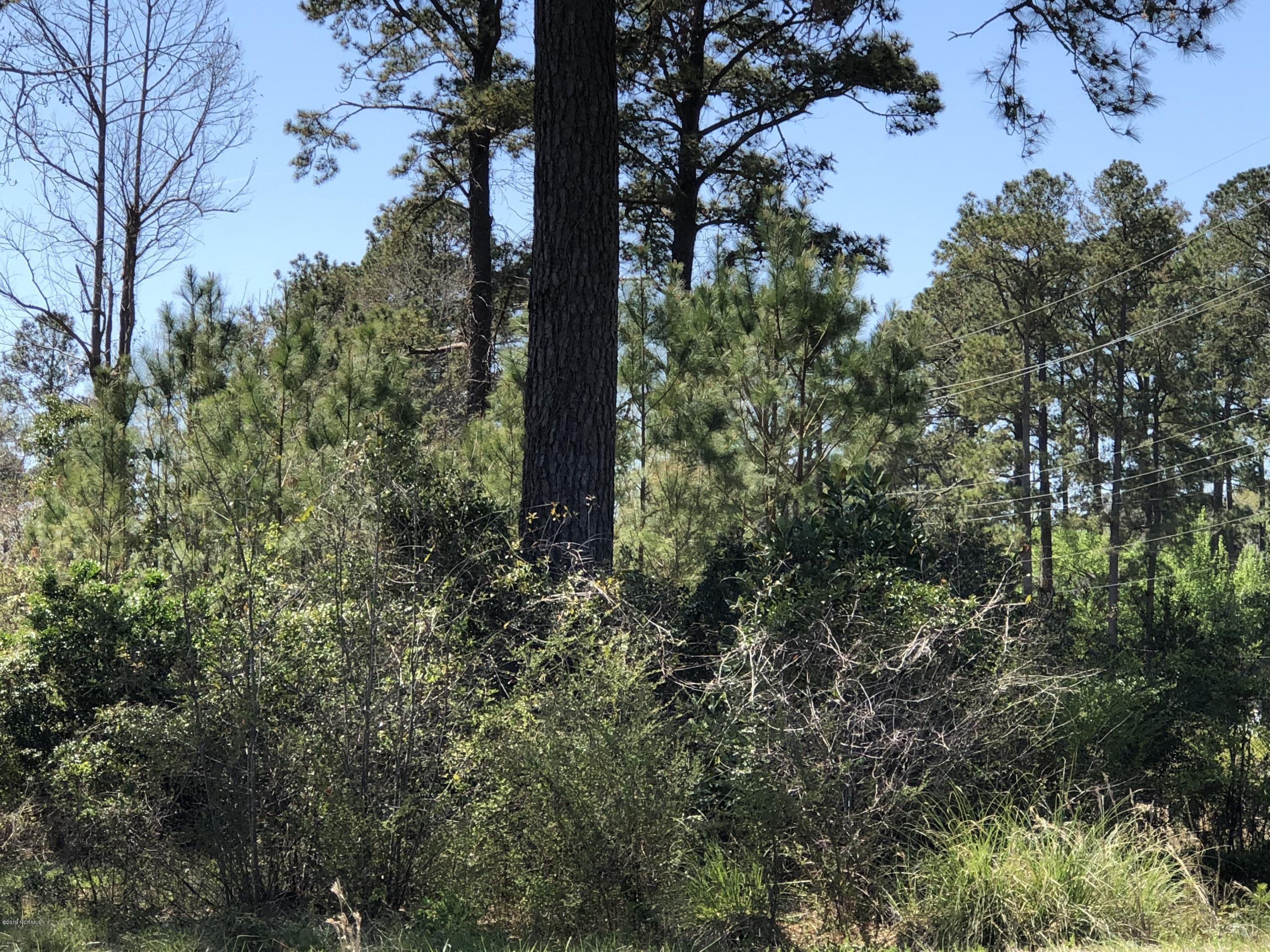 3415 Neuse Boulevard, New Bern, North Carolina 28560, ,Residential land,For sale,Neuse,100159896