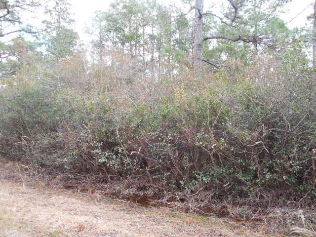 278 Persimmon Road, Boiling Spring Lakes, North Carolina 28461, ,Wooded,For sale,Persimmon,100164607