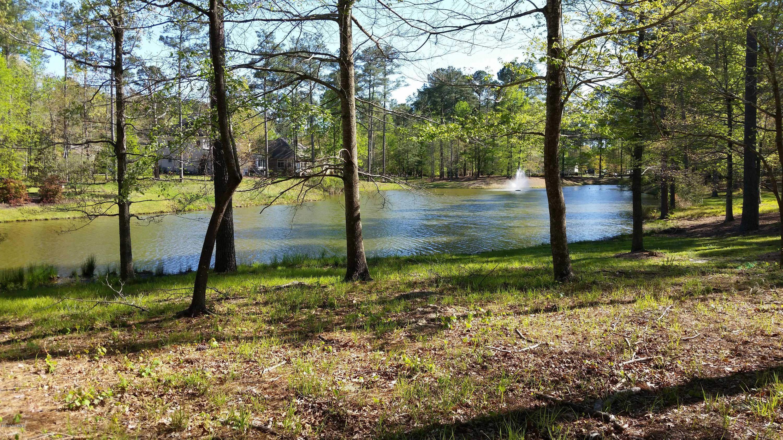 Lot 69 Pasquotank Court, Chocowinity, North Carolina 27817, ,Residential land,For sale,Pasquotank,100160132