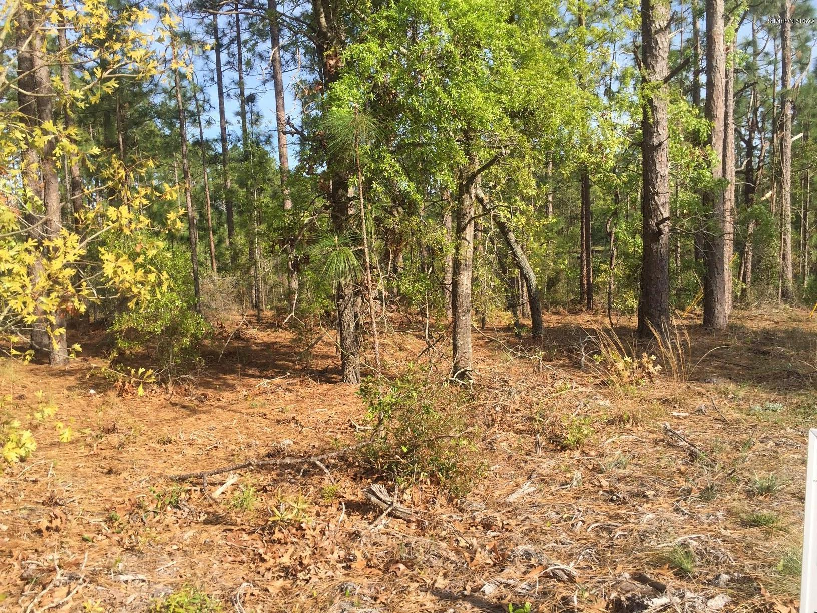 1460 Lisa Road- Boiling Spring Lakes- North Carolina, ,Residential land,For sale,Lisa,100158929