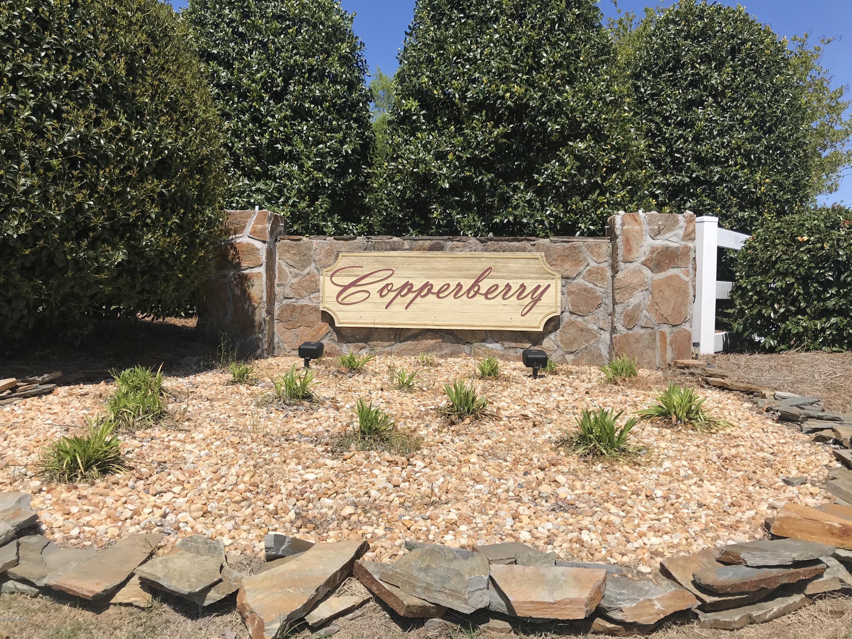 5805 Nobleman Court, Elm City, North Carolina 27822, ,Residential land,For sale,Nobleman,100161597