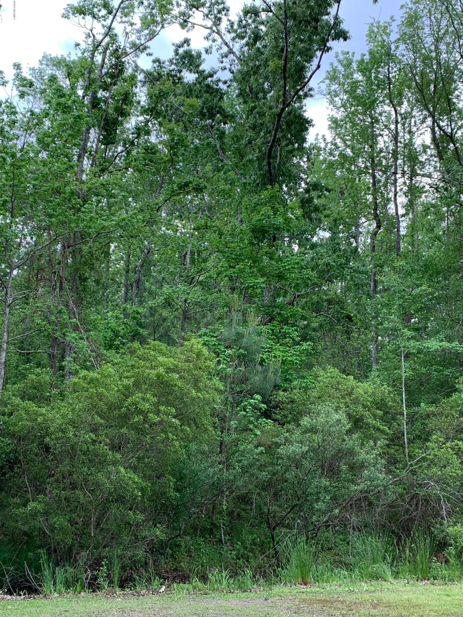 148 Cedar Drive, Oriental, North Carolina, ,Residential land,For sale,Cedar,100117234