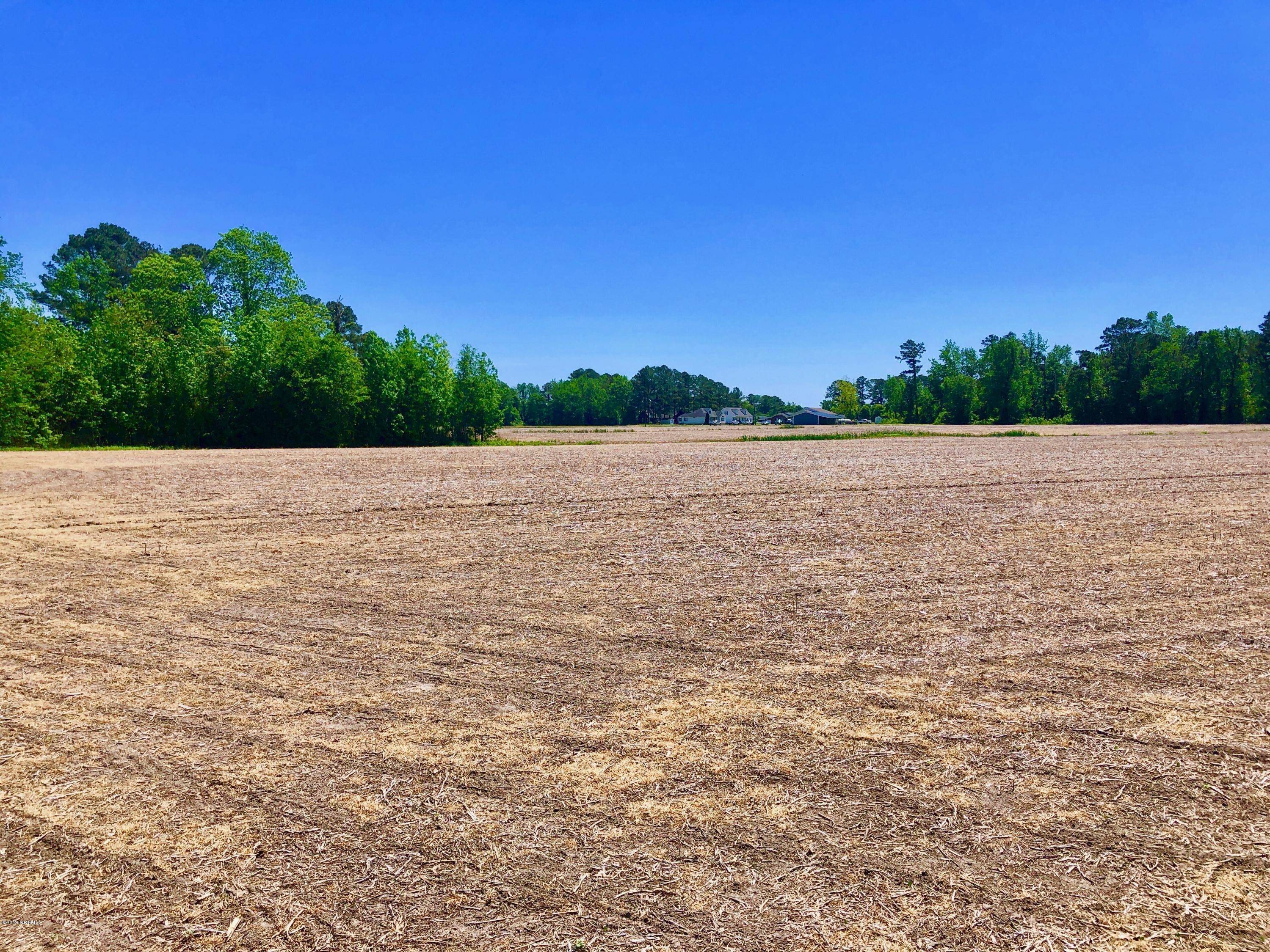 0 State Rd 1142, Chocowinity, North Carolina 27817, ,For sale,State Rd 1142,100163455
