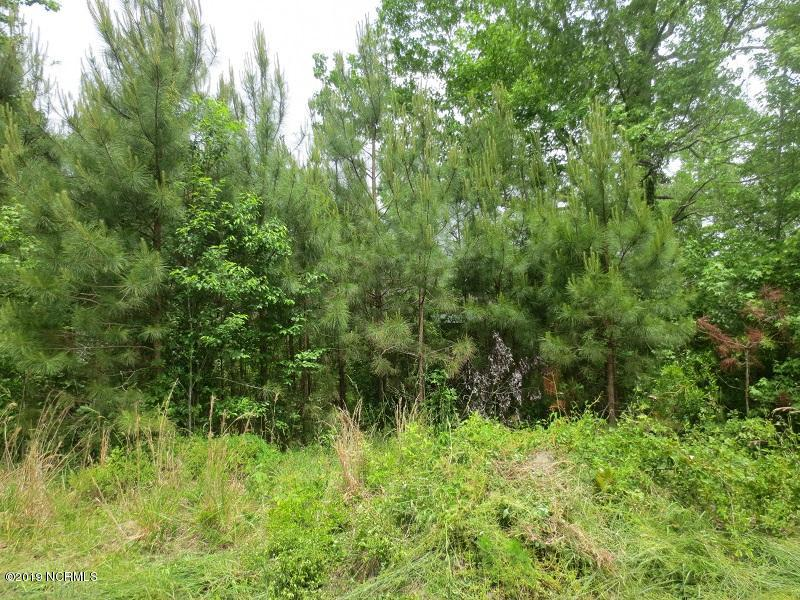 0 Costin Road, Burgaw, North Carolina 28425, ,Residential land,For sale,Costin,100162945