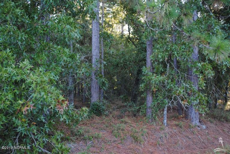 Brunswick Plantation & Golf Resort - MLS Number: 100164256