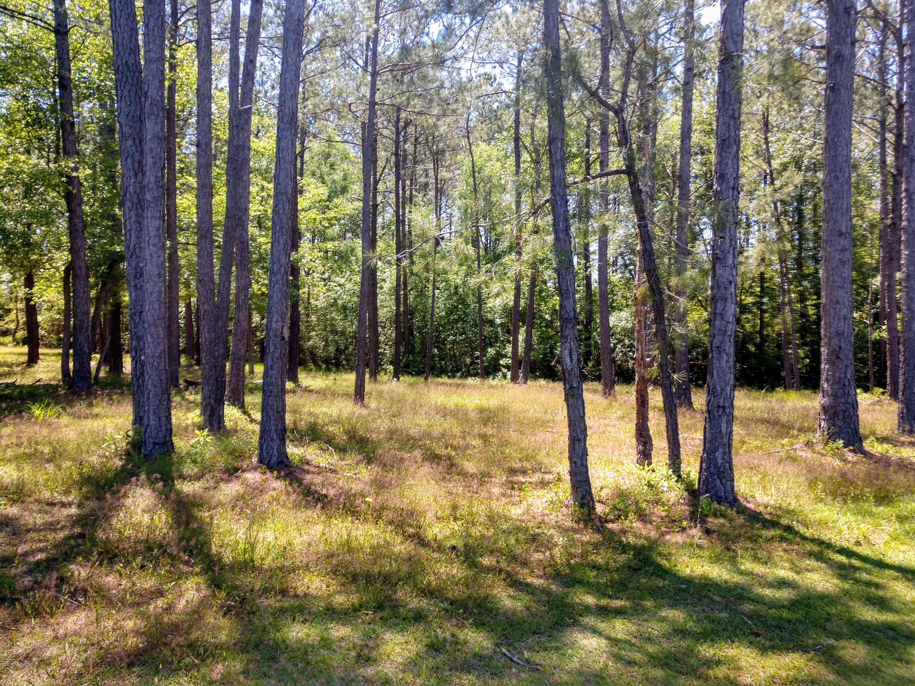 6408 Castlebrook Way, Ocean Isle Beach, North Carolina 28469, ,Residential land,For sale,Castlebrook,100164412
