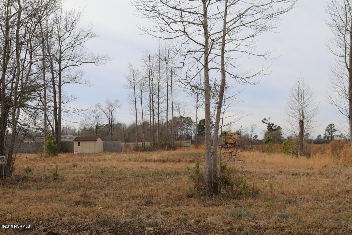 227 Mewborn Drive, Beulaville, North Carolina 28518, ,Residential land,For sale,Mewborn,100165107