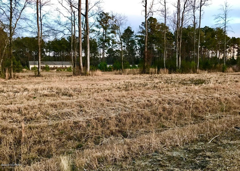 223 Mewborn Drive, Beulaville, North Carolina 28518, ,Residential land,For sale,Mewborn,100165149
