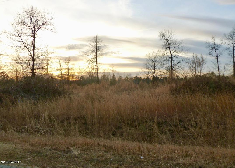 230 Mewborn Drive, Beulaville, North Carolina 28518, ,Residential land,For sale,Mewborn,100165160