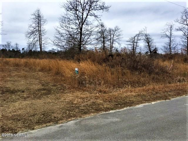 228 Mewborn Drive, Beulaville, North Carolina 28518, ,Residential land,For sale,Mewborn,100165294