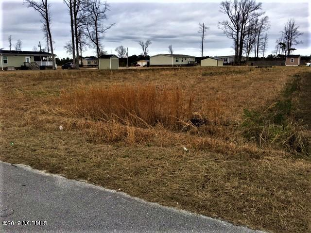 102 Walter Drive, Beulaville, North Carolina 28518, ,Residential land,For sale,Walter,100165296