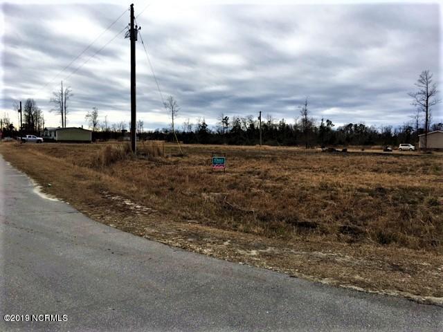 204 Mewborn Drive, Beulaville, North Carolina 28518, ,Residential land,For sale,Mewborn,100165299