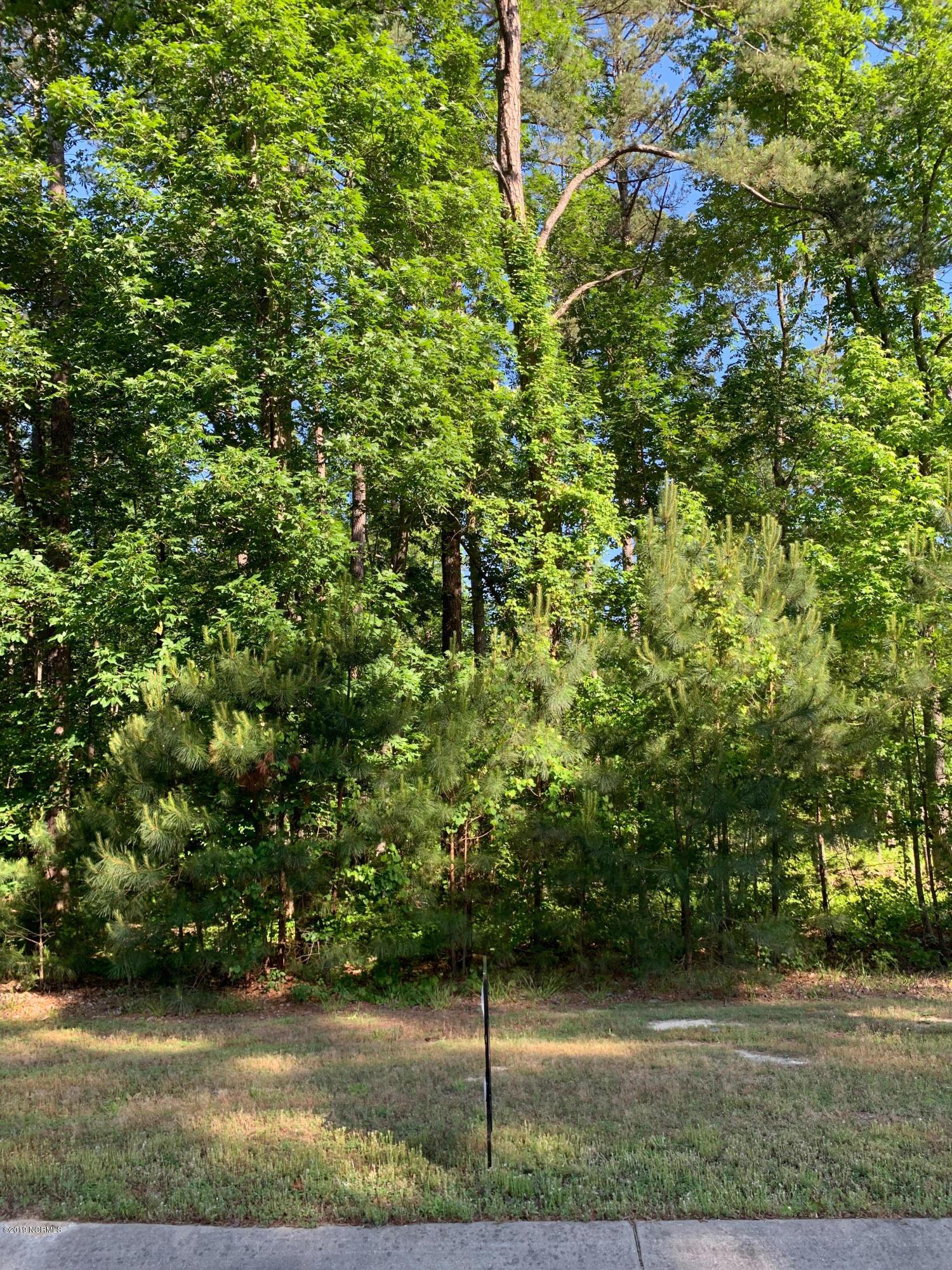 170 Aberdeen, Rocky Mount, North Carolina 27804, ,Wooded,For sale,Aberdeen,100165503