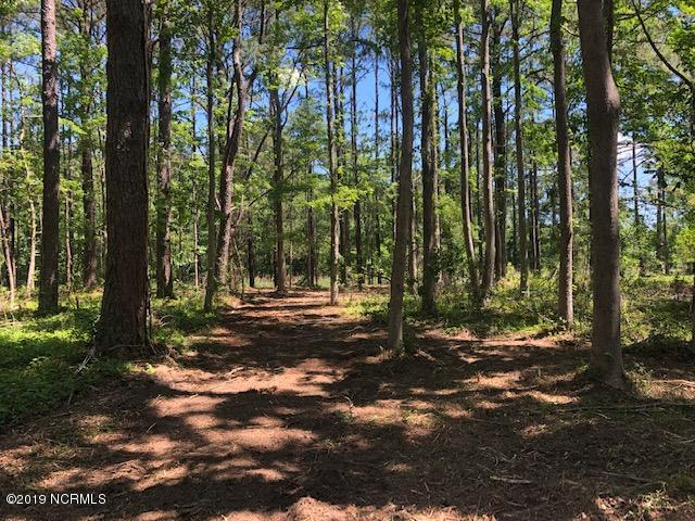812 Sailhaven Drive, Oriental, North Carolina 28571, ,Residential land,For sale,Sailhaven,100165041
