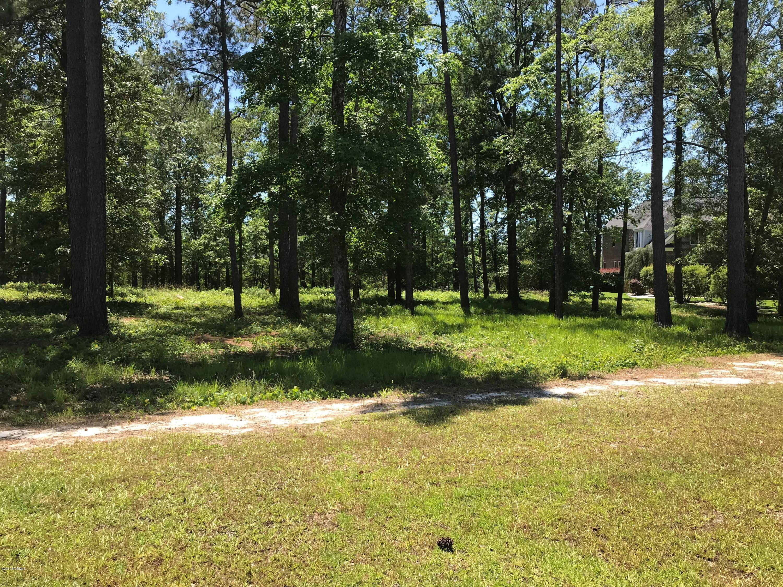 881 Hollybriar Drive, Bolivia, North Carolina 28422, ,Residential land,For sale,Hollybriar,100165679