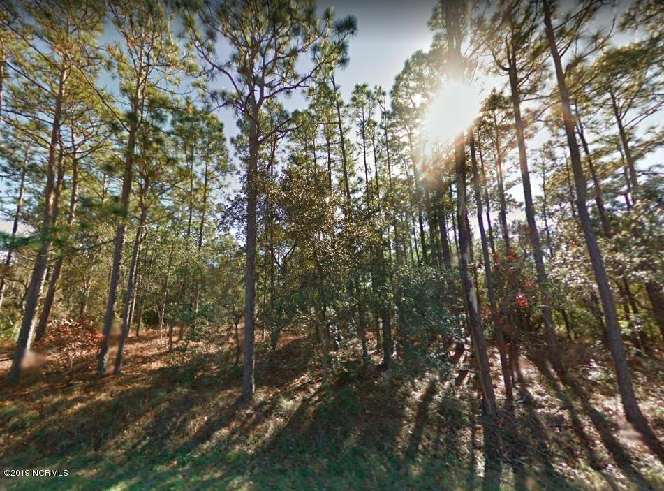 421 South Shore Drive, Southport, North Carolina, ,Residential land,For sale,South Shore,100166036
