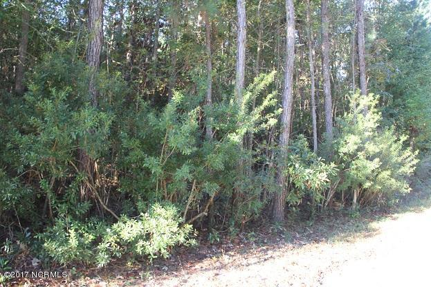 1 Shelter Creek Drive, Burgaw, North Carolina 28425, ,Wooded,For sale,Shelter Creek,100166386