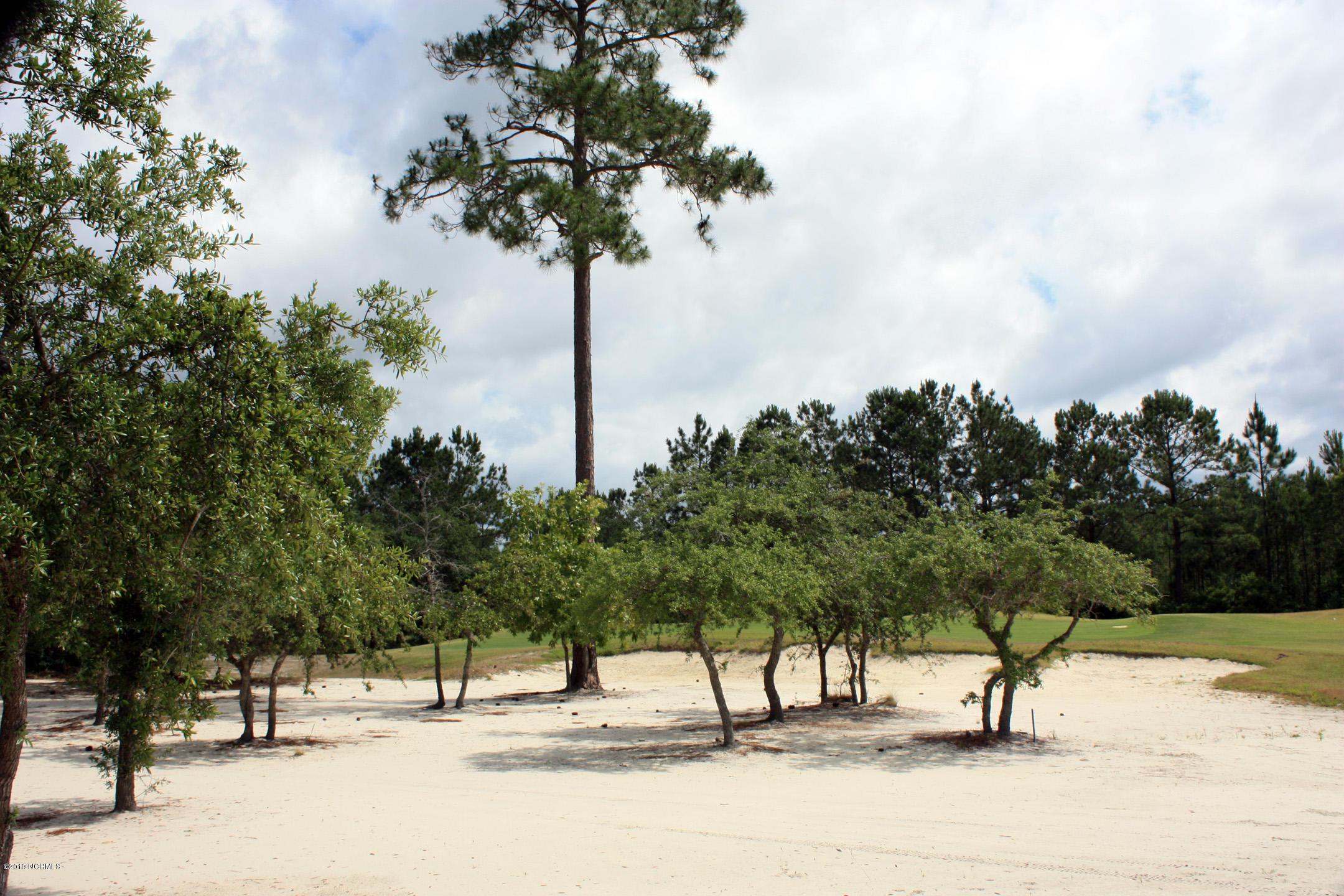 6606 Annesbrook Place, Ocean Isle Beach, North Carolina 28469, ,Residential land,For sale,Annesbrook,100165164