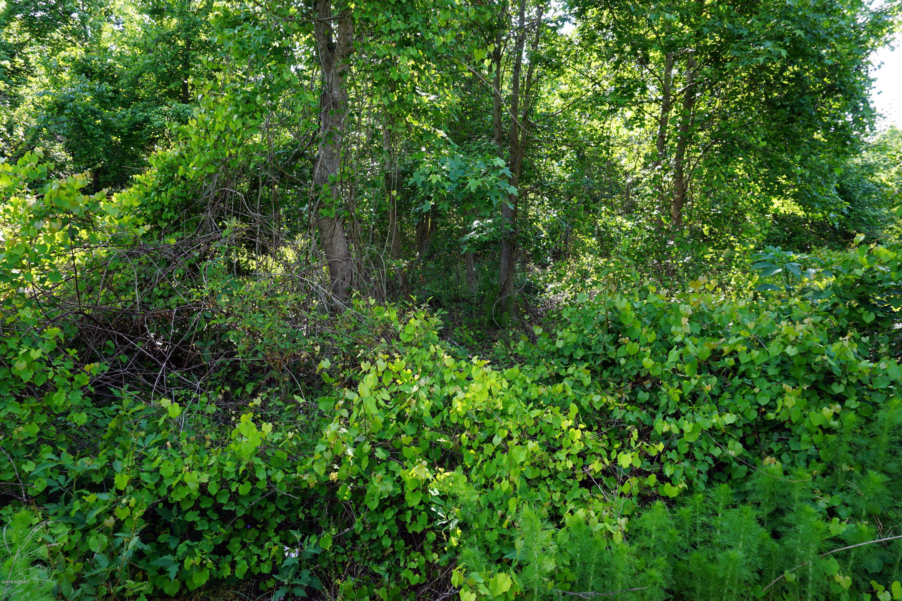 1919 Jimmys Road, New Bern, North Carolina 28560, ,Residential land,For sale,Jimmys,100167177