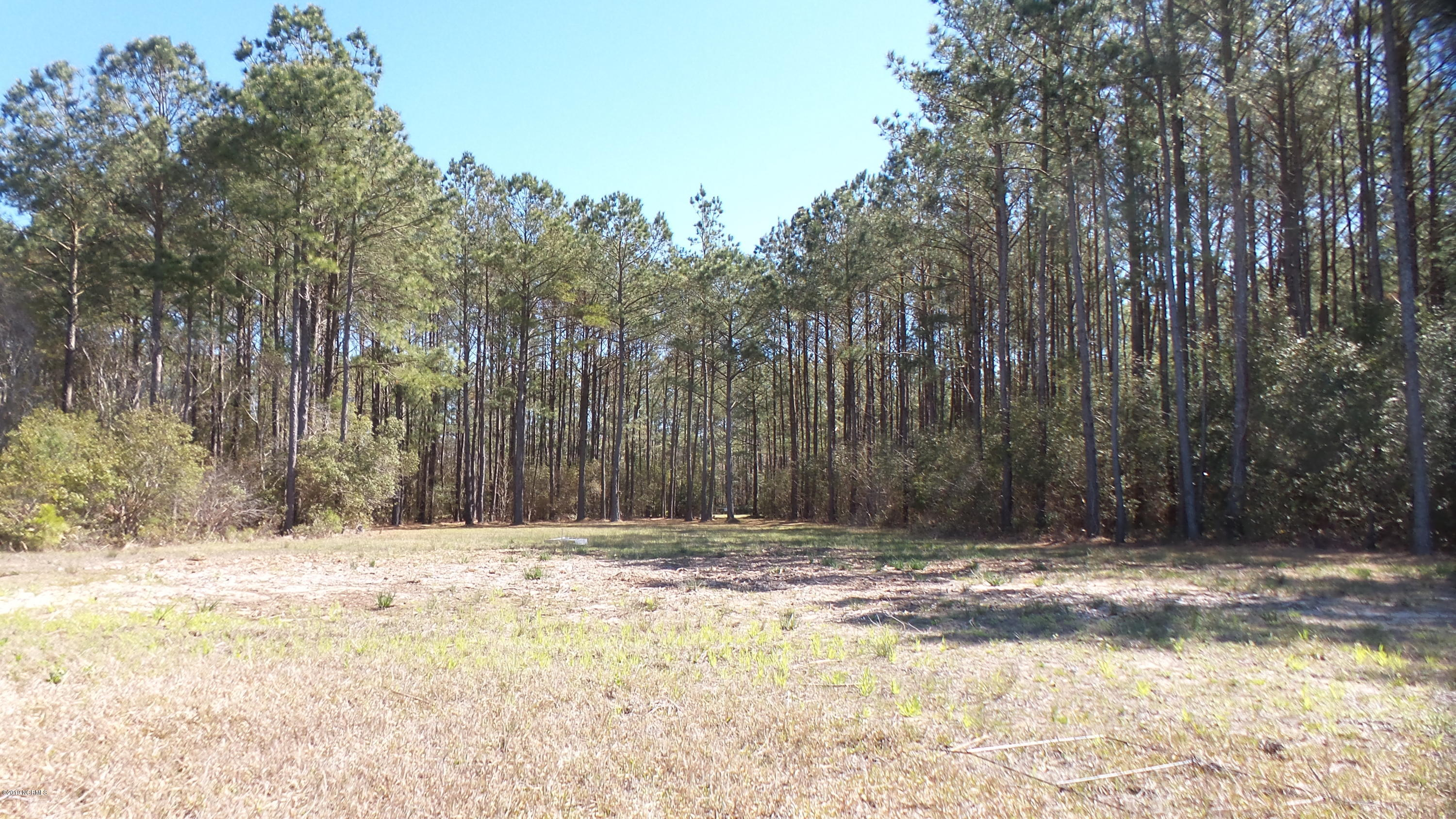 751 Arant Farm Road, Merritt, North Carolina 28556, ,Residential land,For sale,Arant Farm,100166922