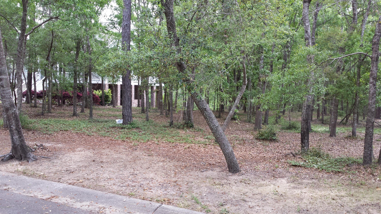 582 Del-Sol Circle, Bolivia, North Carolina 28422, ,Residential land,For sale,Del-Sol,100167213