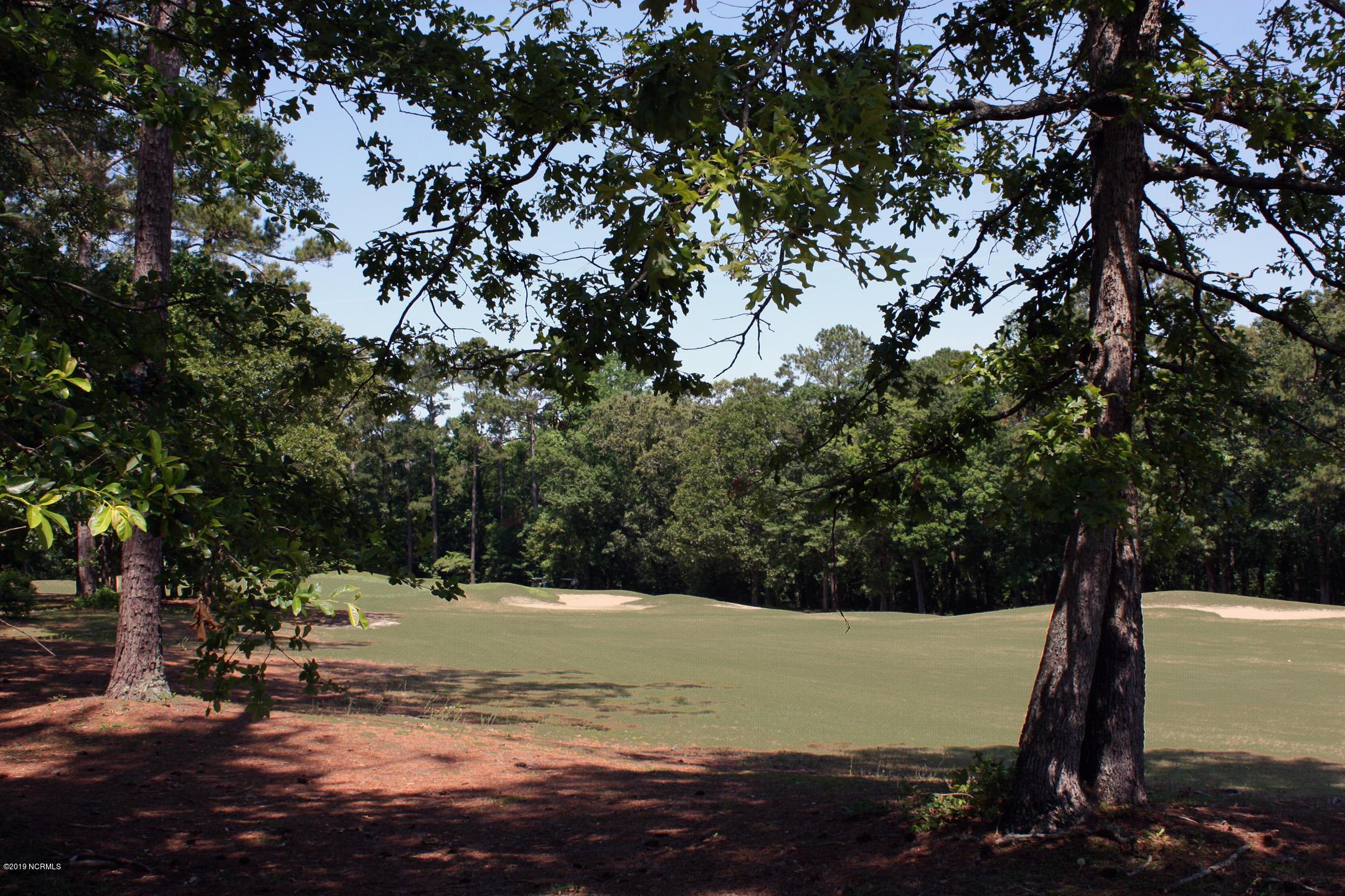 6688 Newpenny Lane, Ocean Isle Beach, North Carolina 28469, ,Residential land,For sale,Newpenny,100168456