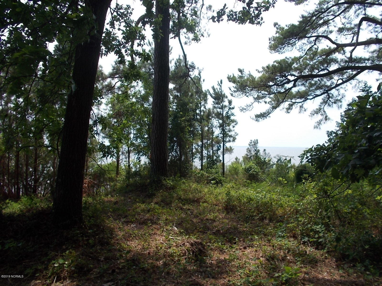 Lot 1 Chambers Point Road, Bath, North Carolina 27808, ,Residential land,For sale,Chambers Point,100169609