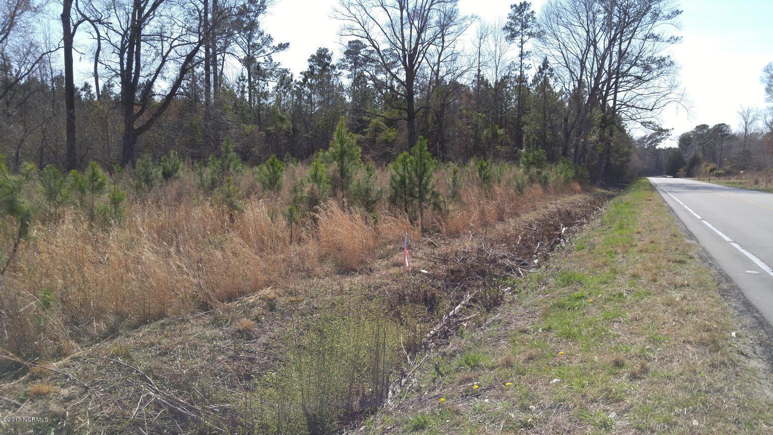 00 Rocky Run Road, Jacksonville, North Carolina 28546, ,Farm,For sale,Rocky Run,100170044