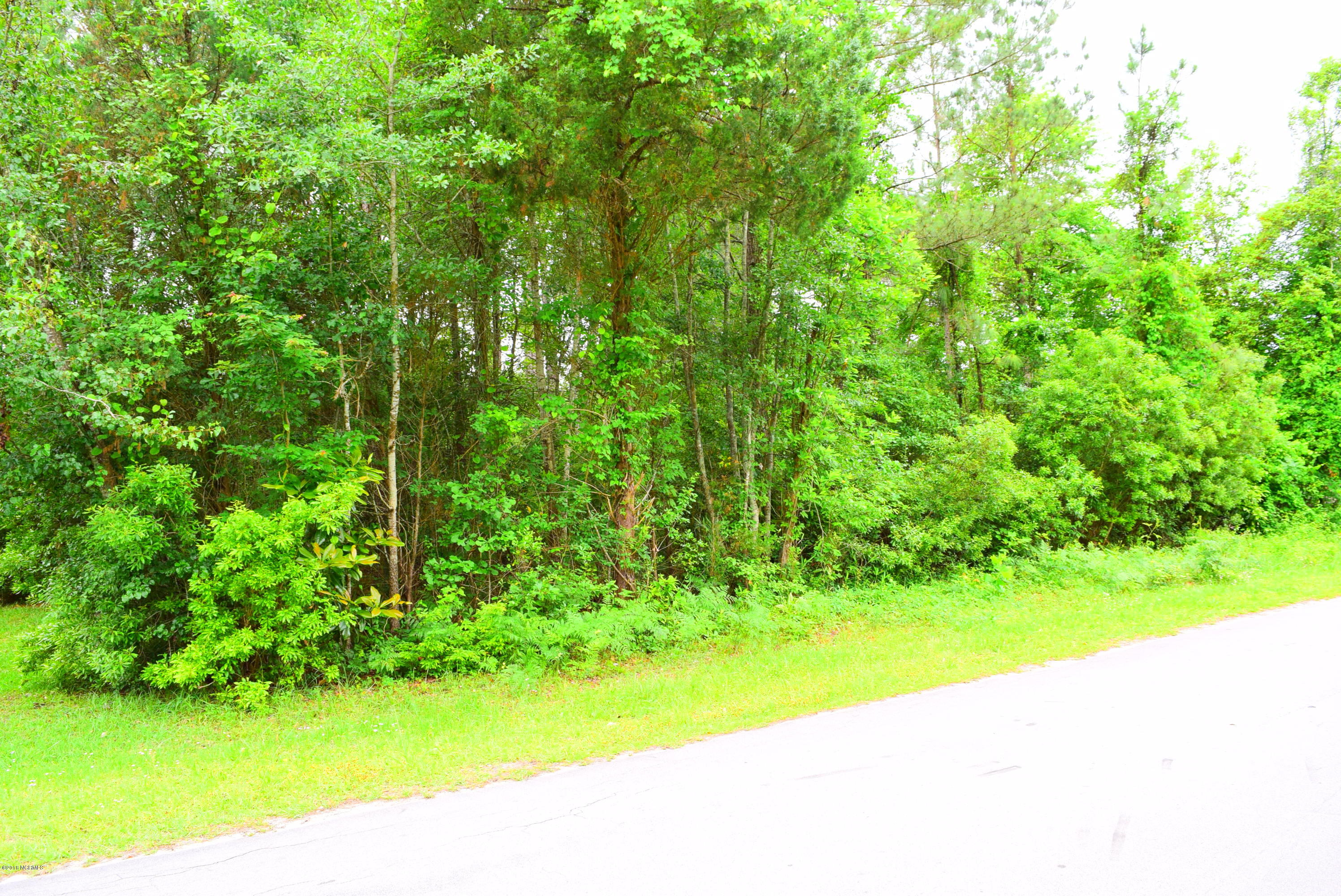 000 Sandy Point Road, New Bern, North Carolina 28560, ,Wooded,For sale,Sandy Point,100170777