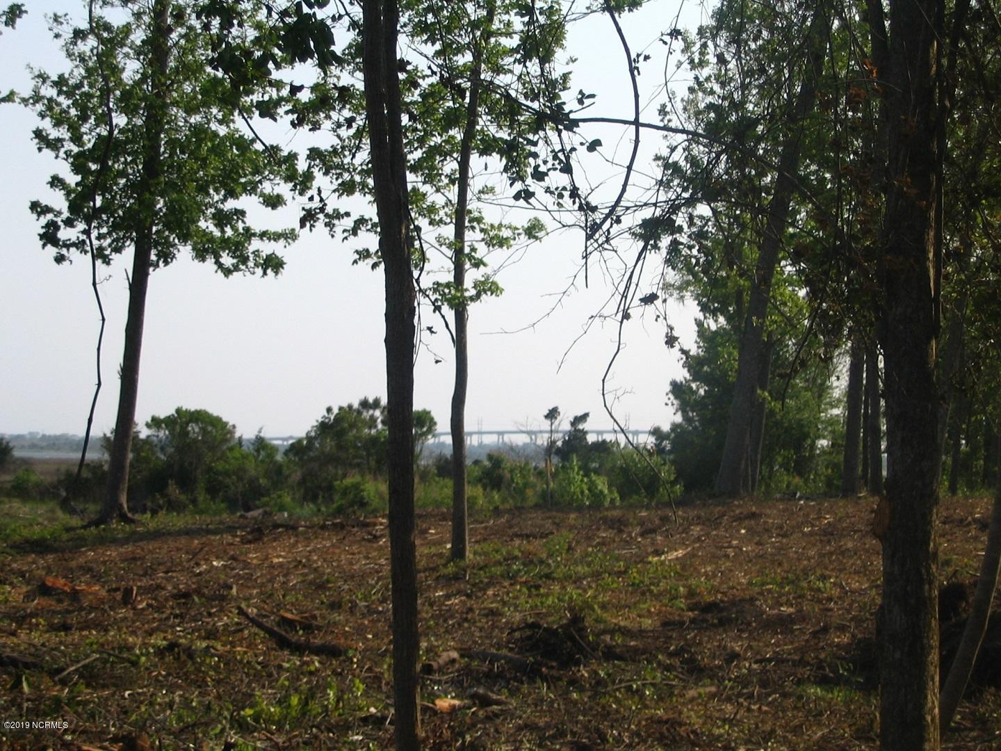 245 Mimosa Drive, Sneads Ferry, North Carolina 28460, ,Residential land,For sale,Mimosa,100172355