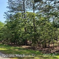 30 Lake Drive, Wagram, North Carolina 28396, ,Residential land,For sale,Lake,100173221