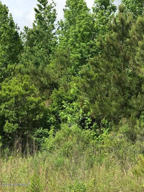 2725 Acorn Branch Road, Wilmington, North Carolina 28405, ,Undeveloped,For sale,Acorn Branch,100173461