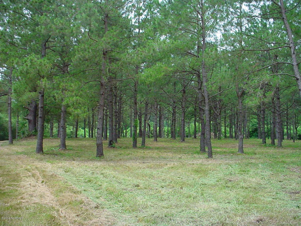 0 Harts Lane, Rocky Point, North Carolina 28457, ,Undeveloped,For sale,Harts,100173328