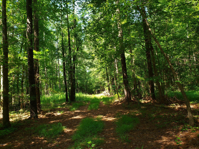 Lot 6 Mixon Creek Drive, Bath, North Carolina 27808, ,Residential land,For sale,Mixon Creek,100173655