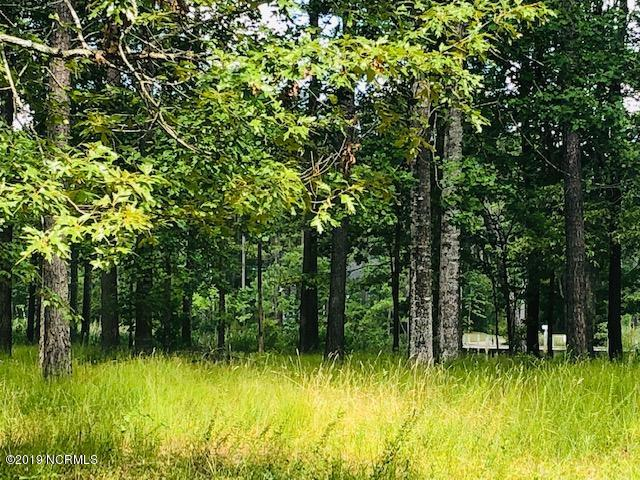 2748 Brown Creek Road, Merritt, North Carolina 28556, ,Residential land,For sale,Brown Creek,100174228