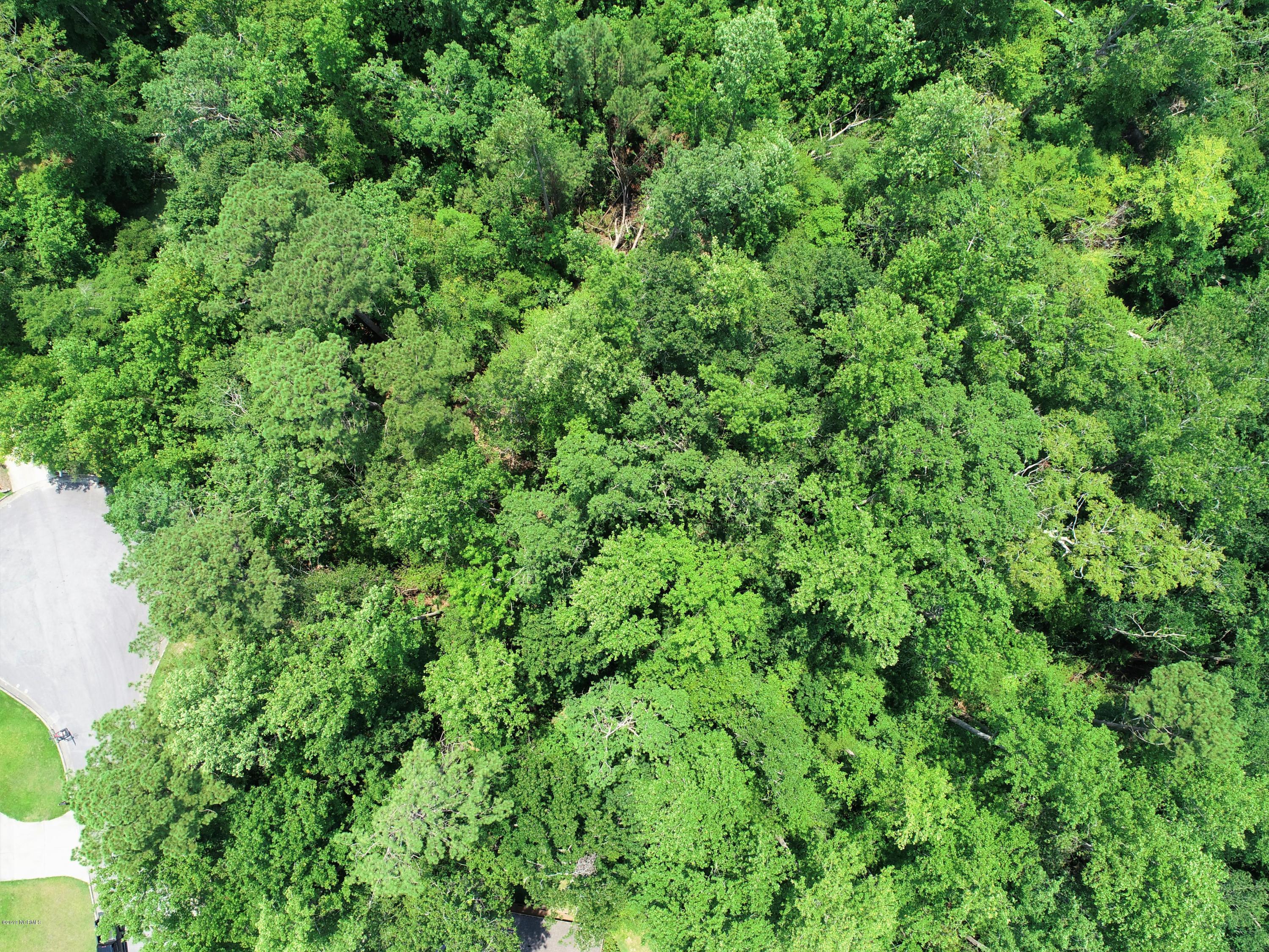 314 Drake Landing, New Bern, North Carolina 28560, ,Residential land,For sale,Drake,100174701