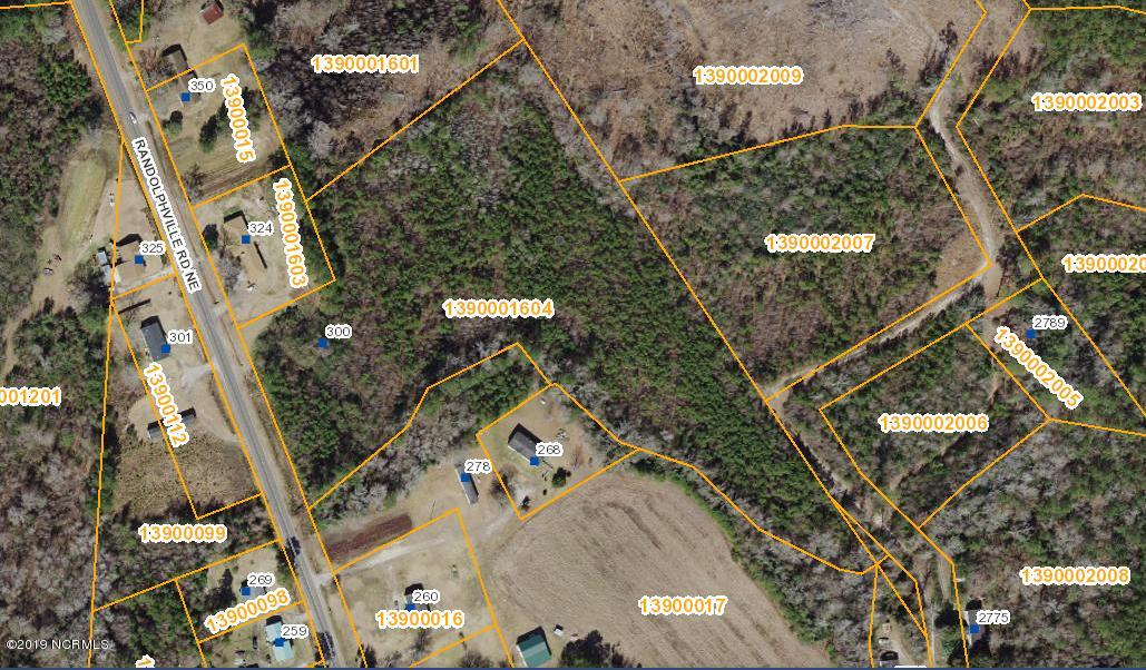 300 Randolphville Road, Bolivia, North Carolina 28422, ,Wooded,For sale,Randolphville,100175249