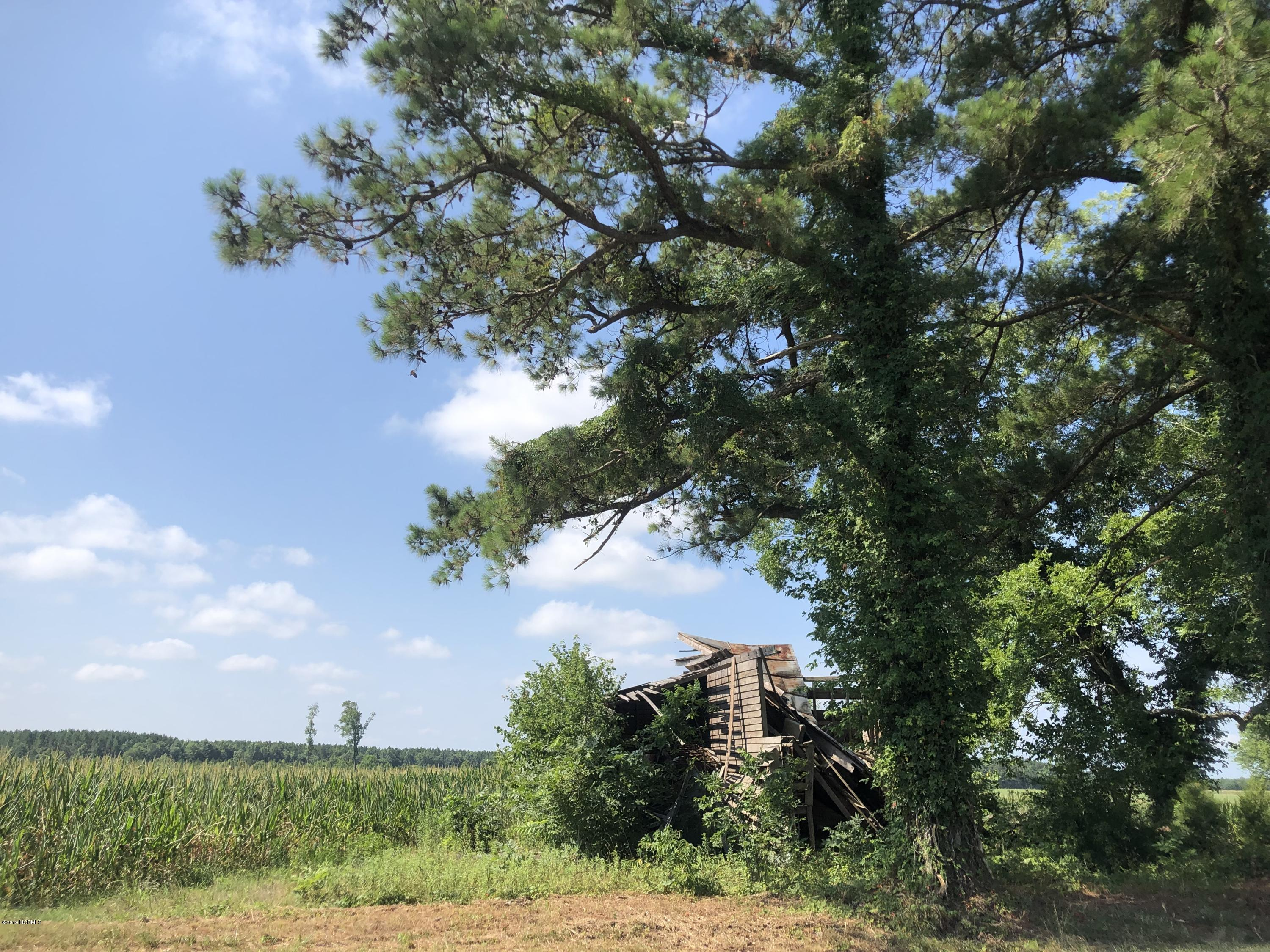 2364 Nc 102, Winterville, North Carolina 28590, ,Residential land,For sale,Nc 102,100173997