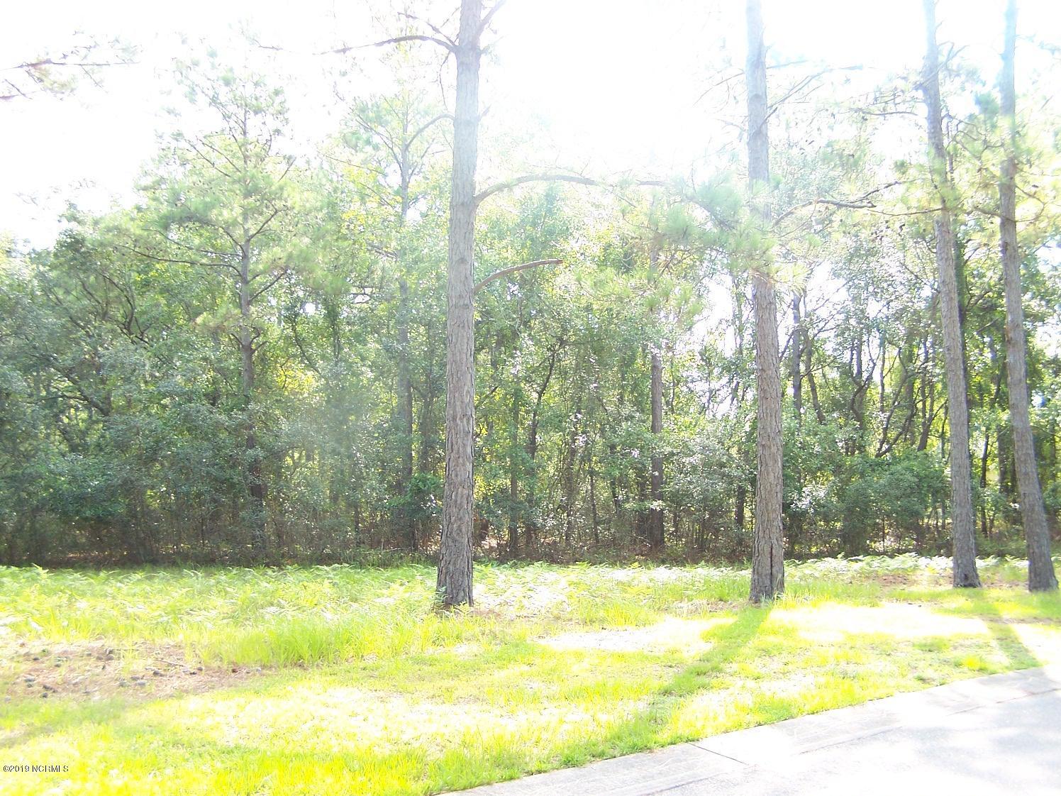 3445 Scupper Run, Southport, North Carolina 28461, ,Residential land,For sale,Scupper Run,100175949