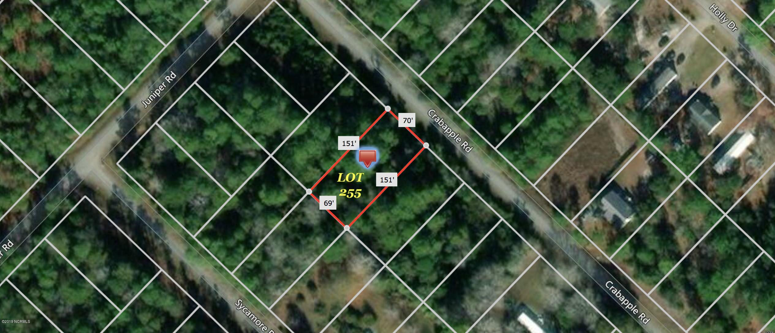 371 & 381 Crab Apple Road, Southport, North Carolina 28461, ,Residential land,For sale,Crab Apple,100176171