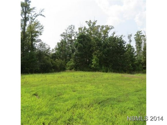 373 Wind Lake Road, Oriental, North Carolina 28571, ,Residential land,For sale,Wind Lake,100176941