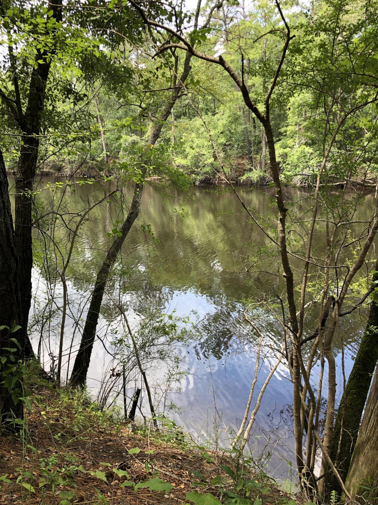 Lot 6 Beaver Trail, Burgaw, North Carolina 28425, ,Undeveloped,For sale,Beaver,100177033
