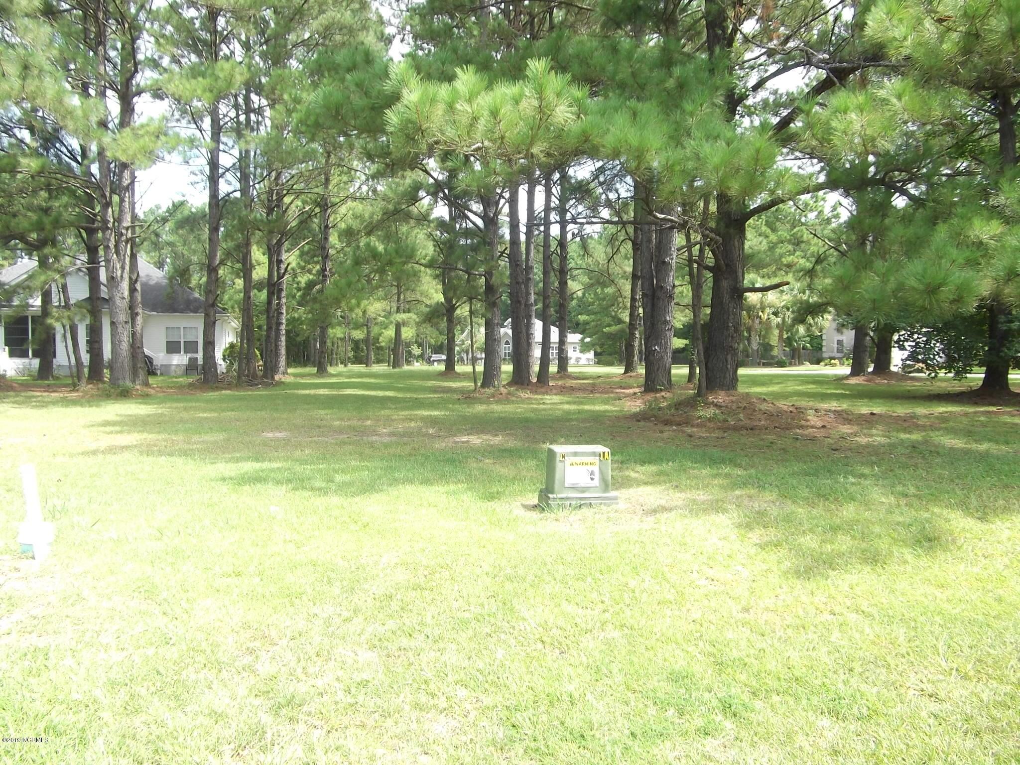 8814 Bainbridge Drive, Calabash, North Carolina 28467, ,Residential land,For sale,Bainbridge,100177784